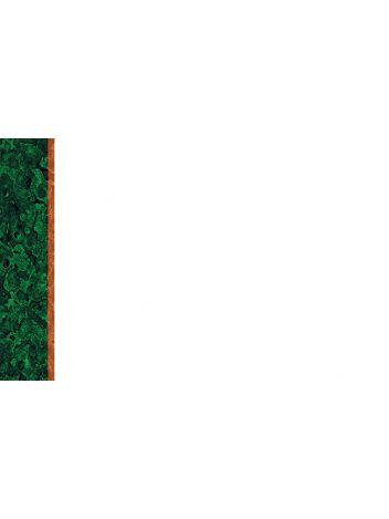 Wizytówki STANDARD - 190 g/m² - 55 x 85 mm - 10 arkuszy A4
