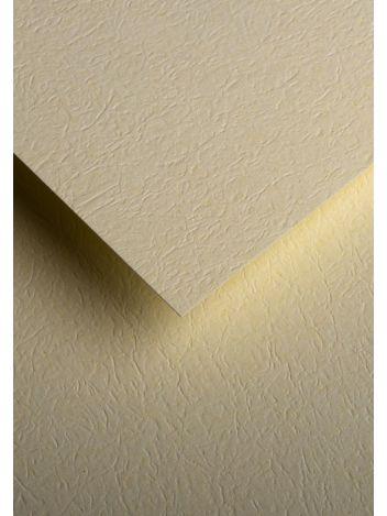 Wysokiej jakości papier ozdobny - O.Papiernia SKÓRA - 230 g/m² - kremowy - 20 sztuk