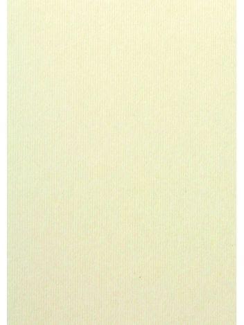 O.Papiernia PASKI WĄSKIE - 230 g/m² - kremowy - 20 sztuk