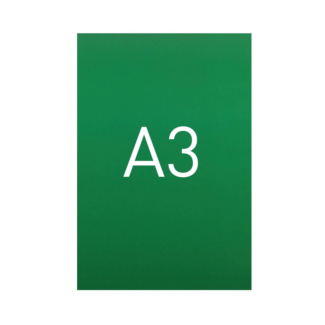 Miękka okładka kartonowa z połyskiem - O.EXCLUSIVE 420 x 297 mm (A3) - 100 arkuszy - zielony