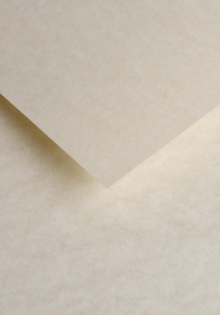 Wysokiej jakości papier ozdobny - O.Papiernia MARINA - 90 g/m² - kremowy - 25 sztuk